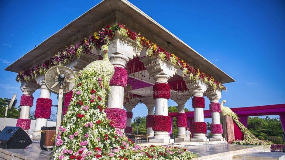 umaid bhavan wedding 1